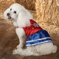 pPETS 9925790r200 Save up to 75% on Halloween Costumes, toys and treats at Petsmart!