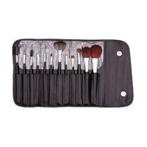 13 Piece Makeup Brush Set Deal 13 Piece Makeup Brush Set and Case $11.09 ~ Free Shipping