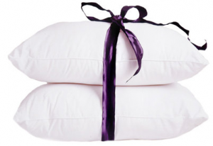 down pillow deal 300x206 Down Pillows   2 pk for $32.22 (reg $139.90)