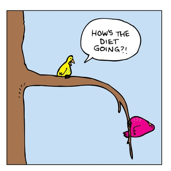 Diet Bird Cartoon Time to Conquer!  Week 1: A Pleasant Surprise