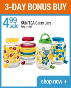 Sun Ta Glass Jars 243x300 3 Day Bonus Buys Sale at ShopKo.com! $4 for Microfiber Pillows and Much More!
