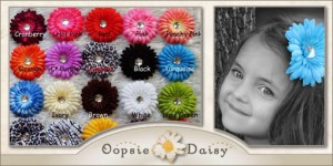 oopsiedaisydec2011 1068221 regular 300x150 12 Darling Daisy Hair Clips for only $12!