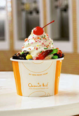 healthy treat deals $10 GC to Orange Leaf Frozen Yogurt   $5 (Utah)