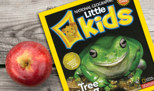 National Geographic Little Kids One Year Subscription to National Geographic Little Kids Mag $12
