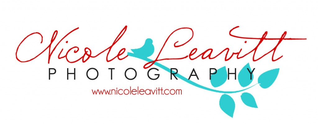 Nicole Leavitt Photography Logo 1024x402 One Year Blog Anniversary!!  Check Out Our Sponsors