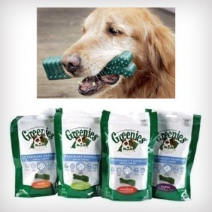 greenies 300x300 $11.75 Shipped for Greenies Dental Chews for Dogs (Regularly $17.50)