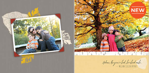 fall photo book sale 50% Off 12x12 Photo Books! Plus FREE Shipping!